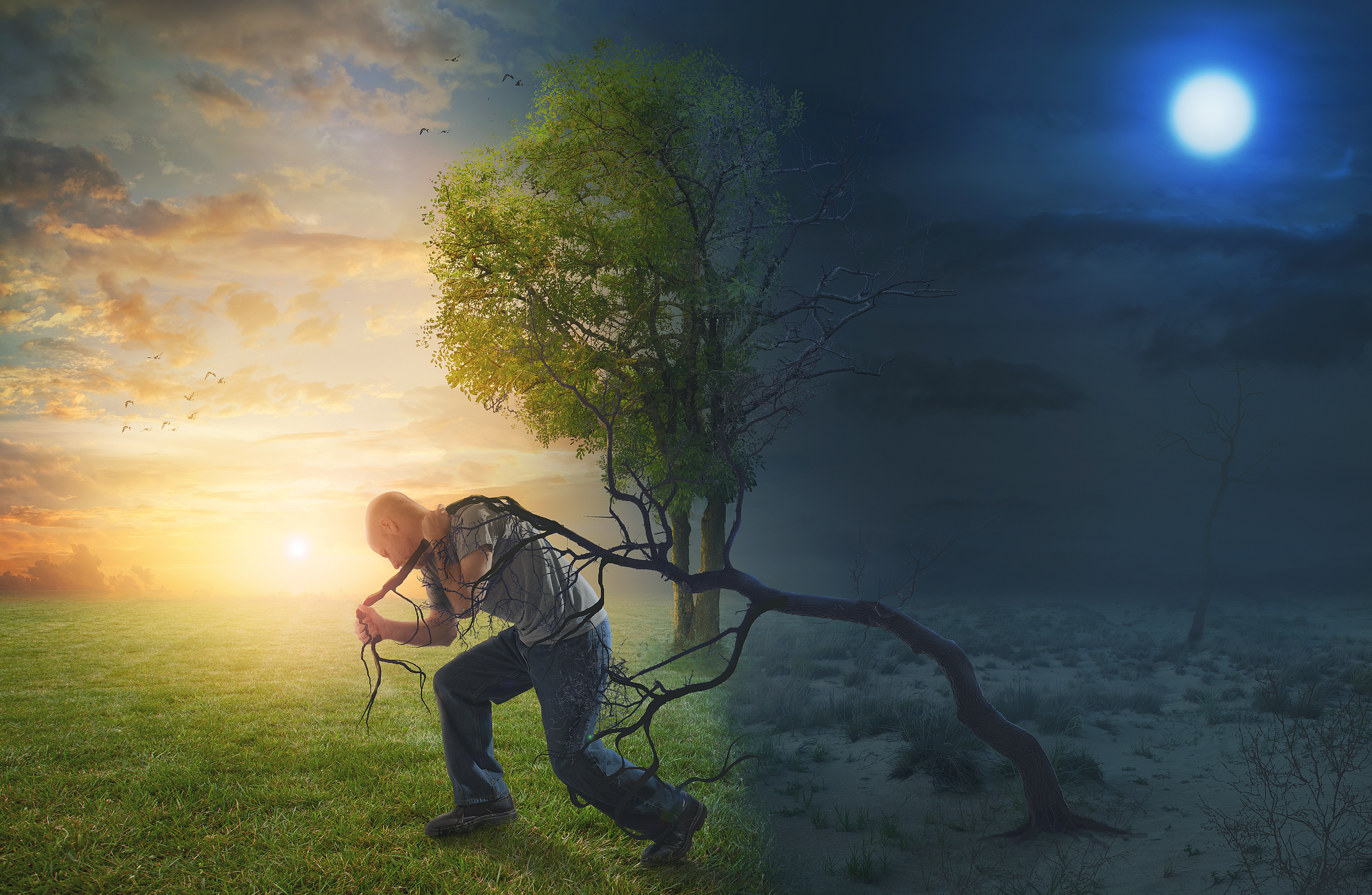 a-man-walks-into-the-light-and-pulls-an-old-tree-from-the-darkness_HsVf1-9UDl.jpg
