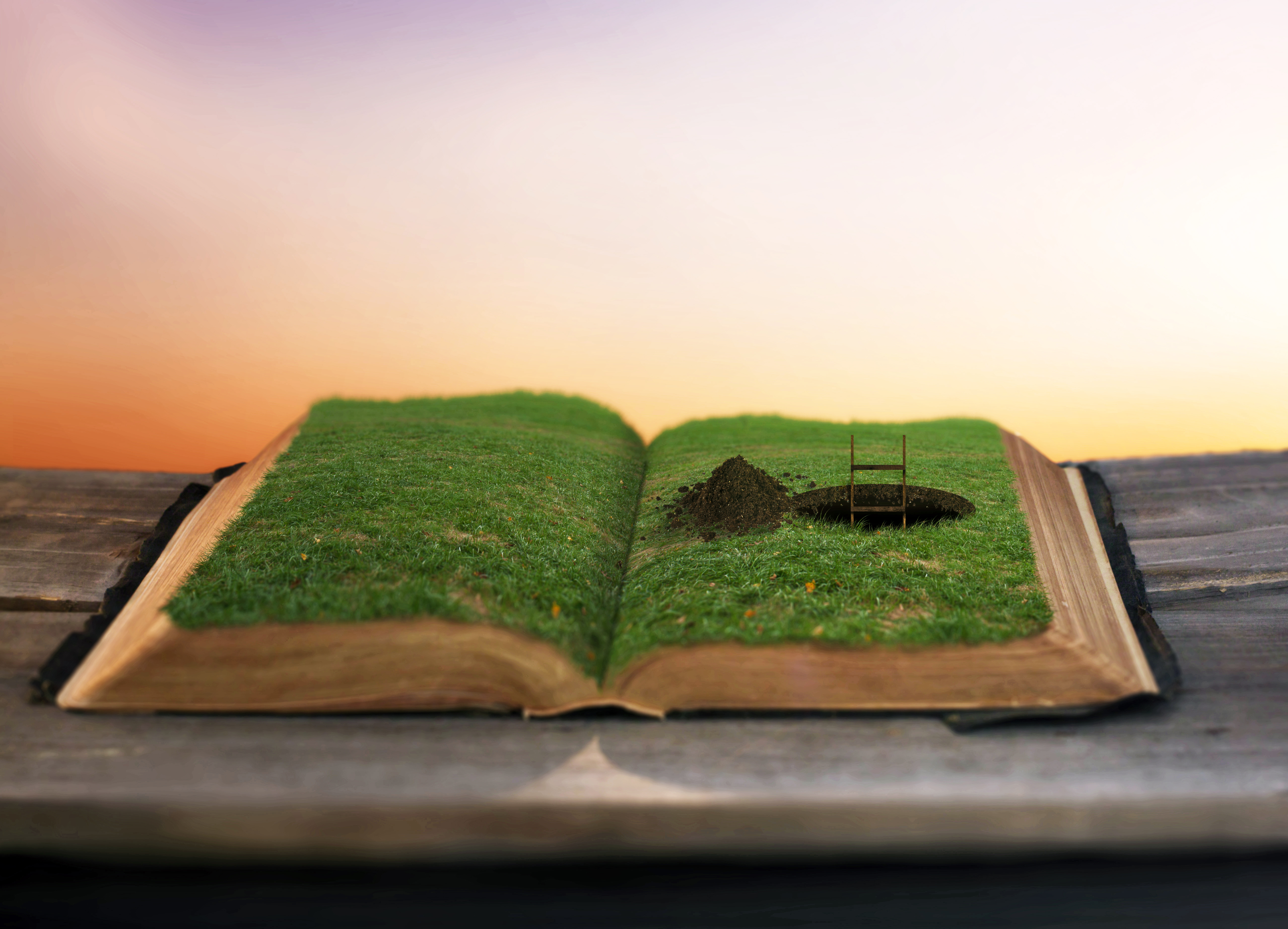 surreal-image-of-a-pathway-being-dug-inside-a-bible_rQUIZkMeR.jpg